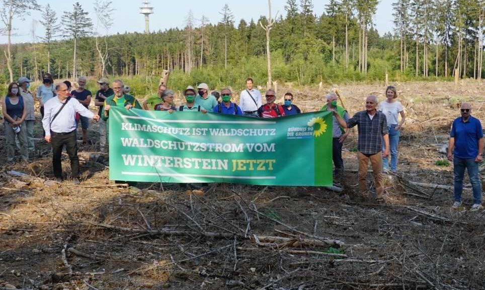 Klimaschutz ist Waldschutz